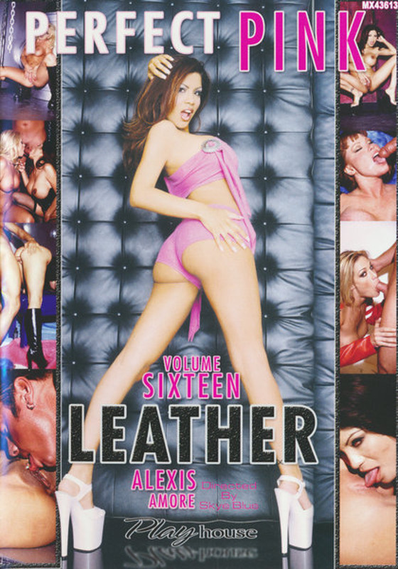 Perfect Pink Leather  16 DVD Image