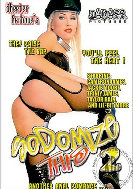 Sodomize This 2 DVD Image