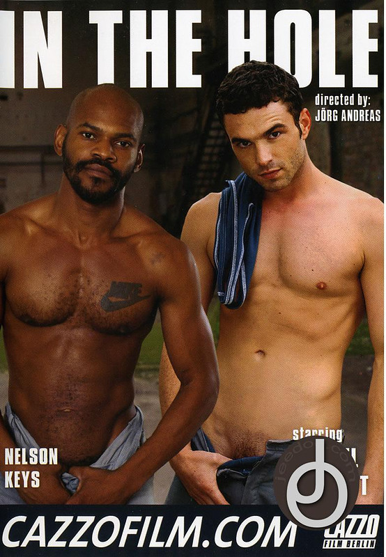 In The Hole Gay DVD Image