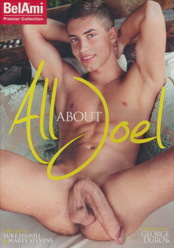 All About Joel Gay DVD Image