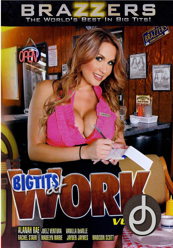 Big Tits At Work 12 DVD Image