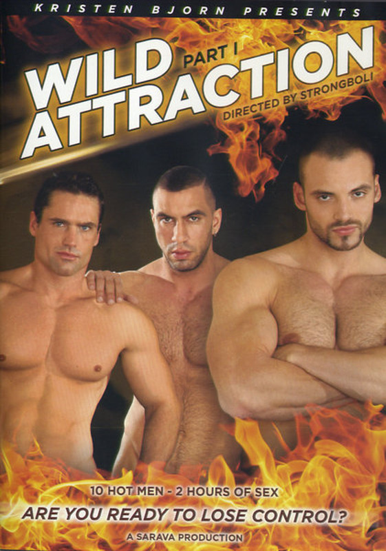 Wild Attraction  1 Gay DVD Image