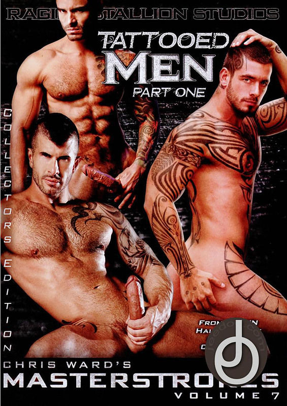 Masterstrokes 7 Gay DVD Image