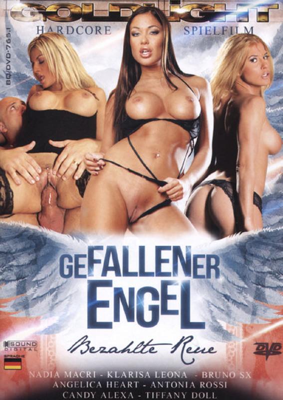 Gefallener Engel DVD Image