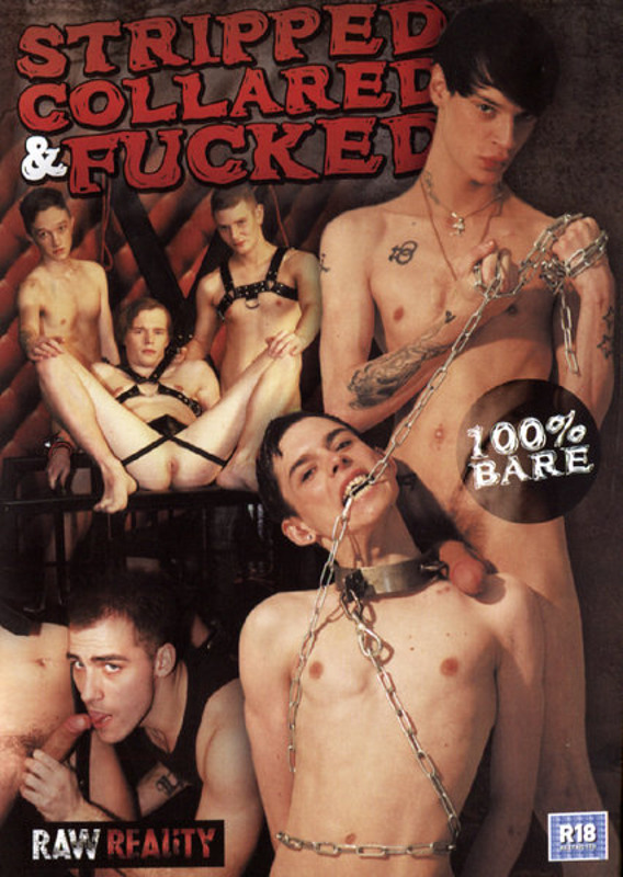 Stripped Collared & Fucked Gay DVD Image