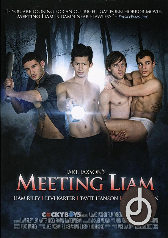 Meeting Liam  [2 DVDs] Gay DVD Image