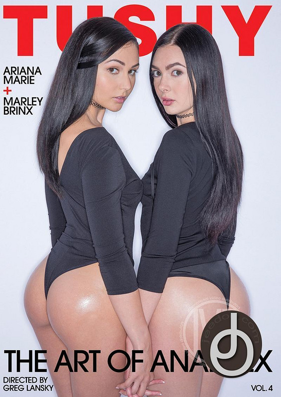 Art Of Anal Sex 4 DVD Image