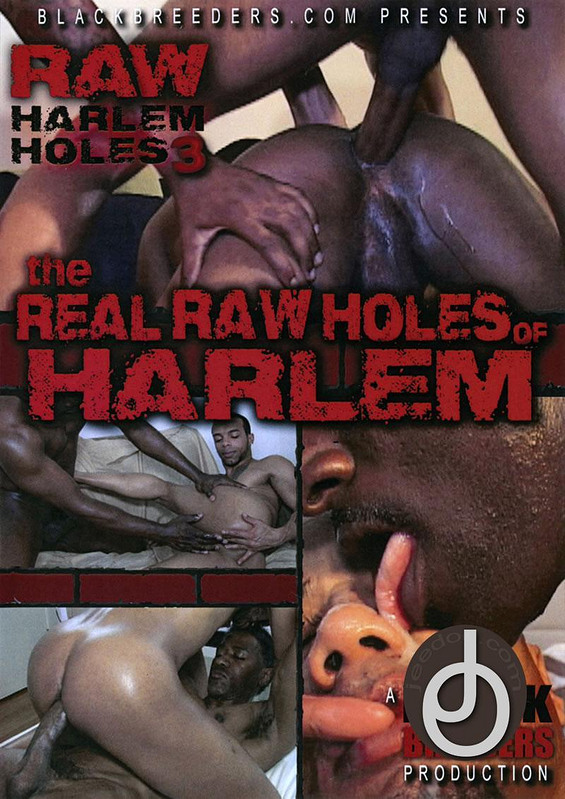 Real Raw Holes Of Harlem 3 Gay DVD Image