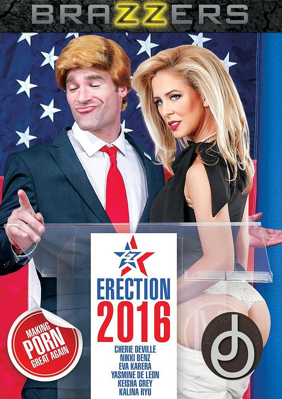 Zz Erection 2016 DVD Image
