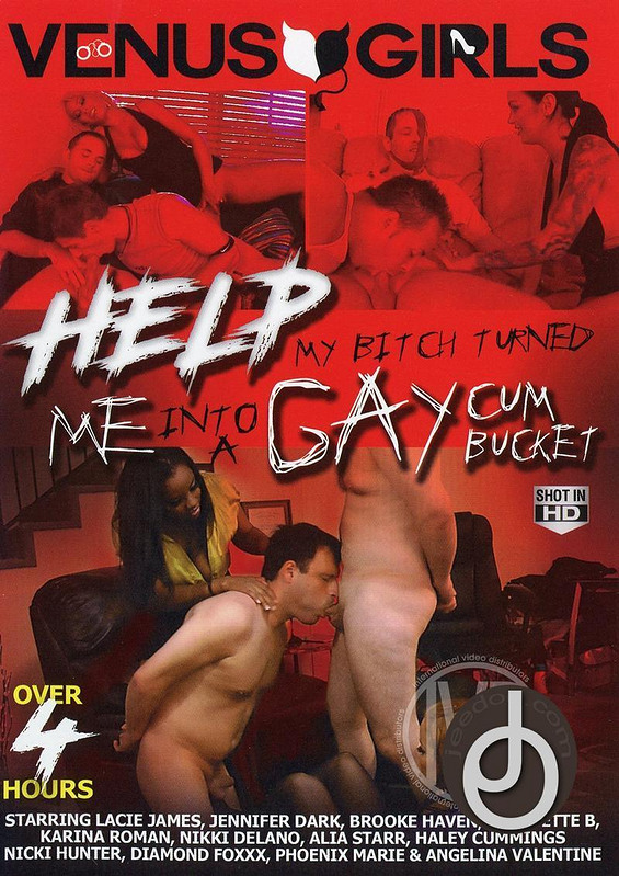 4hr Help My Bitch Turned Me Into Gay Gay DVD Image