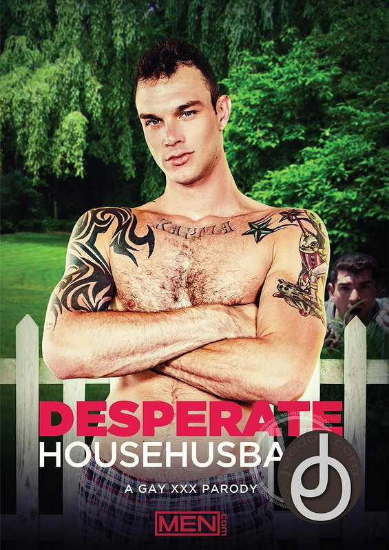 Desparate Househusband Gay DVD Image