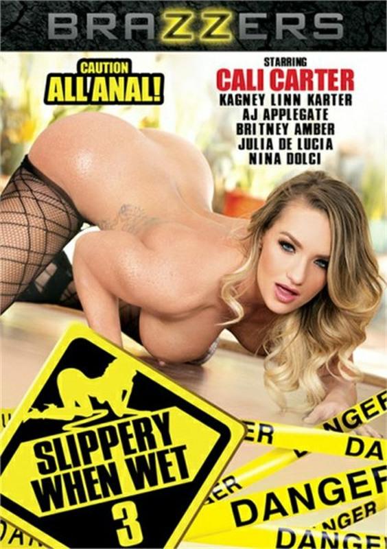Slippery When Wet 3 DVD Image