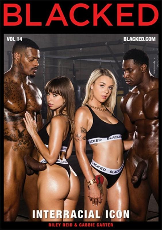 Interracial Icon Vol. 14 DVD Image