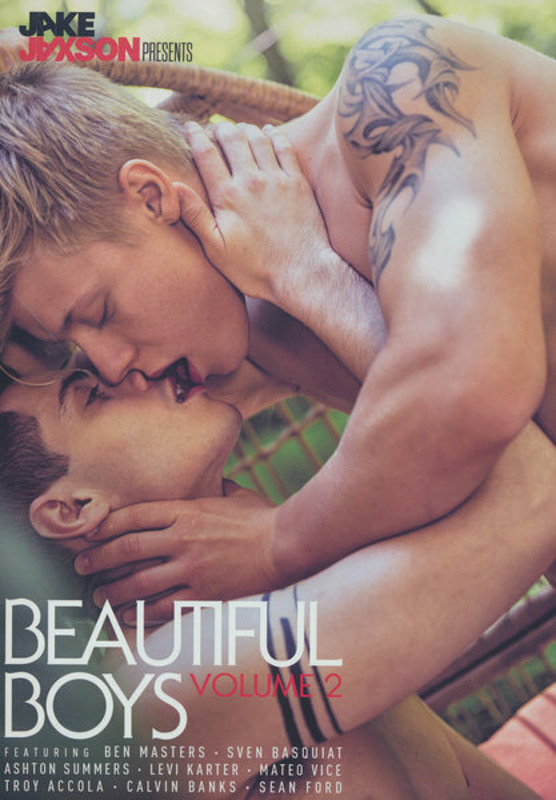 Beautiful Boys Vol. 2 Gay DVD Image