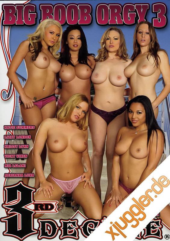 Big Boob Orgy 3 DVD Image
